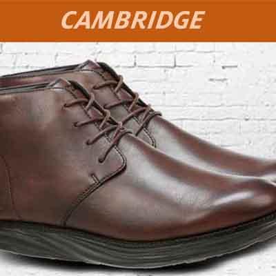 Cambridge Ankle Boots
