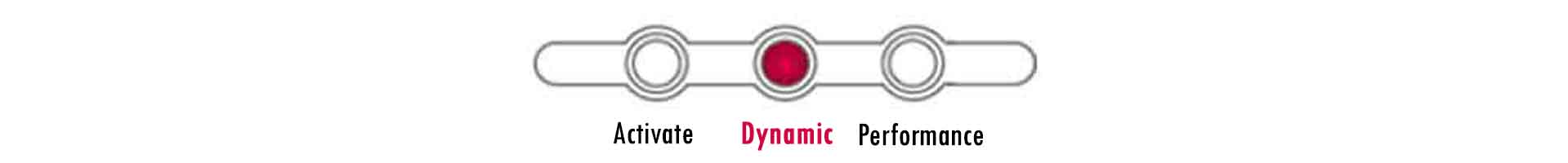 Dynamic Level